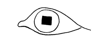all seeing eye, the first one
